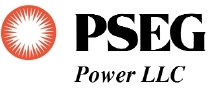 Pseg Power logo