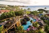 Wailea Beach Resort Slide